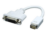 Dinic Mini DVI-DVI adapter